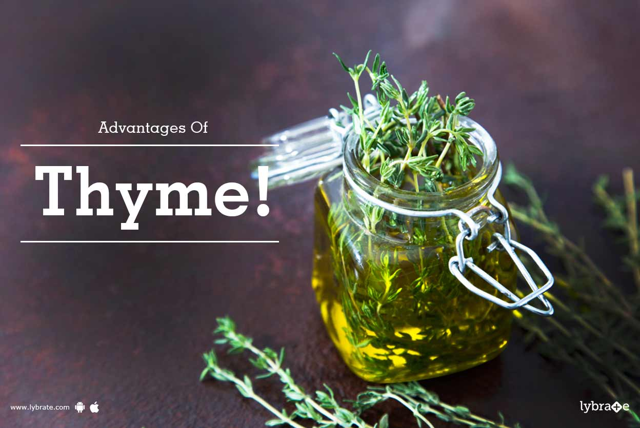 Thyme: beneficial properties of the plant 93