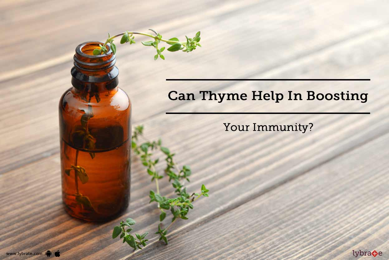 Thyme herb - useful properties, contraindications, use 36