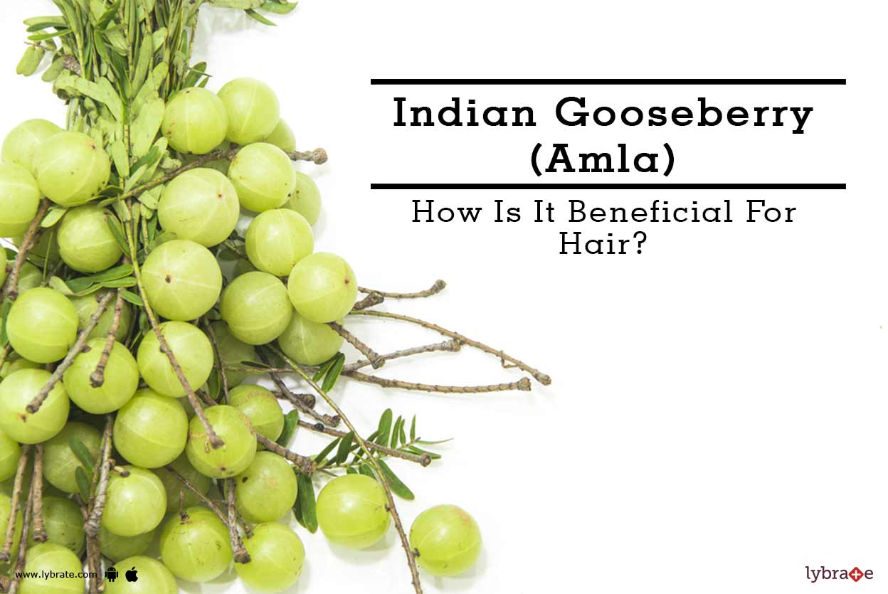 Indian Gooseberry (Amla) - How Is It