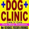 Dr.Dog Clinic & Care | Lybrate.com