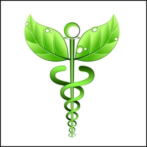 Homeo remedia homeopathy clinic, Jaipur