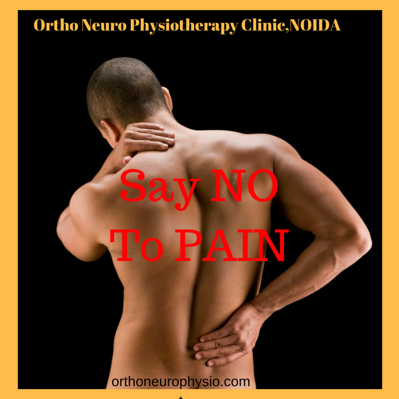 Ortho Neuro Chiropractic Physiotherapy Clinic, Noida
