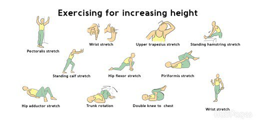 How to Increase Your Height - By Dr  Anvita Bhargava | Lybrate