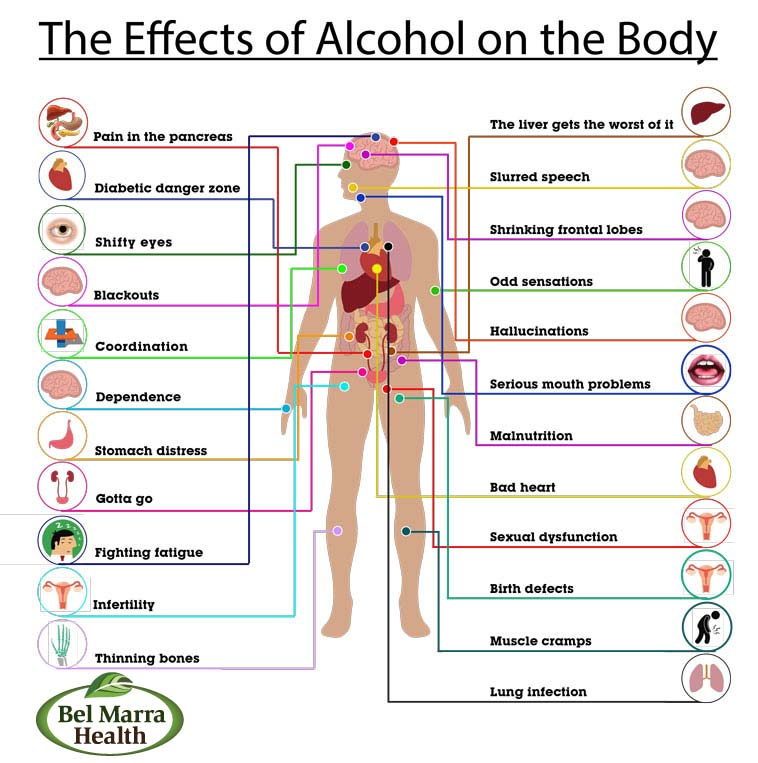 The Effects of alcohol on the Body - By Dr. Juhi Parashar ...