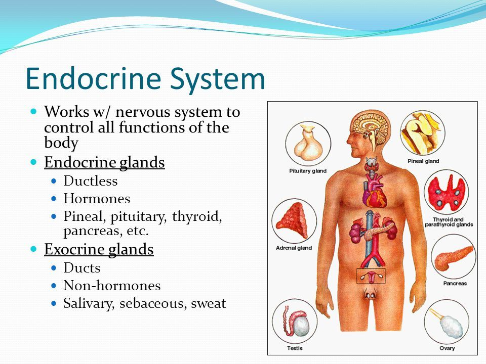 How To Cure Hormonal Disorders? - By Dr  Radhika A (Md) | Lybrate