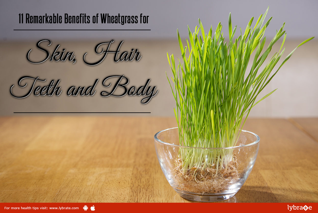 Watch 12 Best Benefits Of Chives For Skin And Health video
