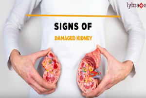 A few signs can be quite helpful in early detection of a damaged kidney such as foamy urine, loss...
