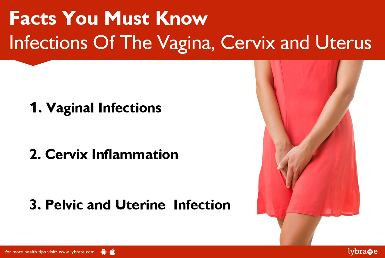 Infections Of The Vagina Cervix And Uterus Facts You Must Know