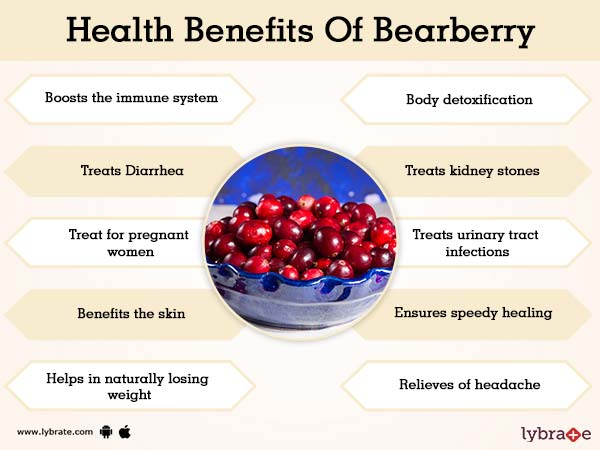 Benefits of Bearberry And Its Side Effects | Lybrate