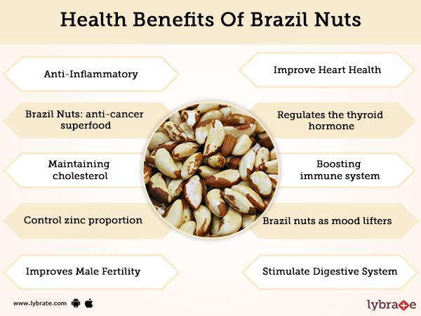 Benefits of Brazil Nuts And Its Side Effects | Lybrate