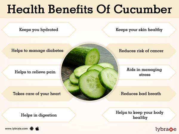 Benefits of Cucumber And Its Side Effects | Lybrate