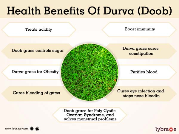 Durva (Doob) Grass Benefits | Lybrate