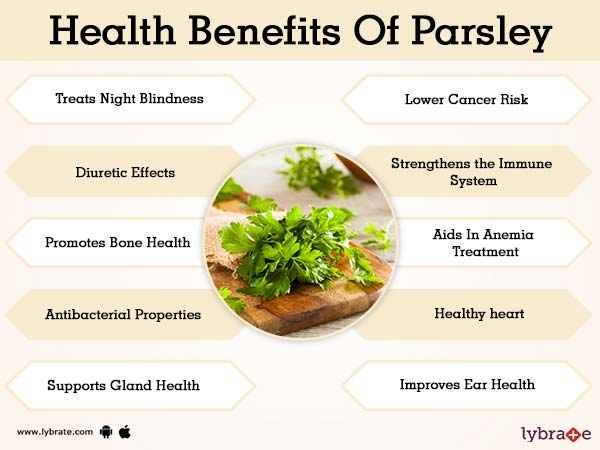 8dd2fa4c64c Benefits of Parsley And Its Side Effects | Lybrate