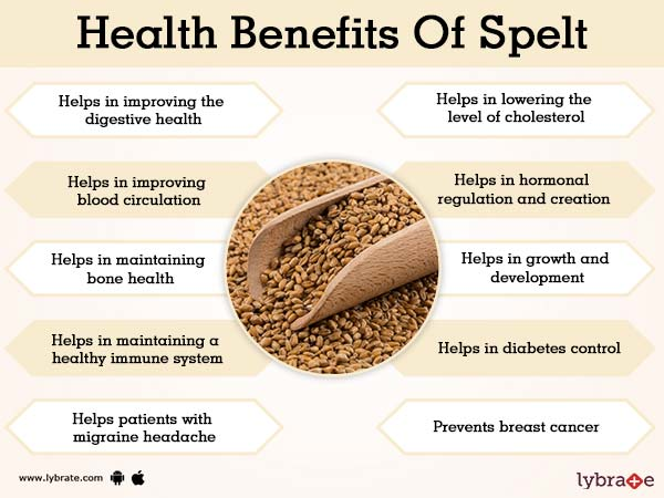 benefits of spelt and its side effects lybrate