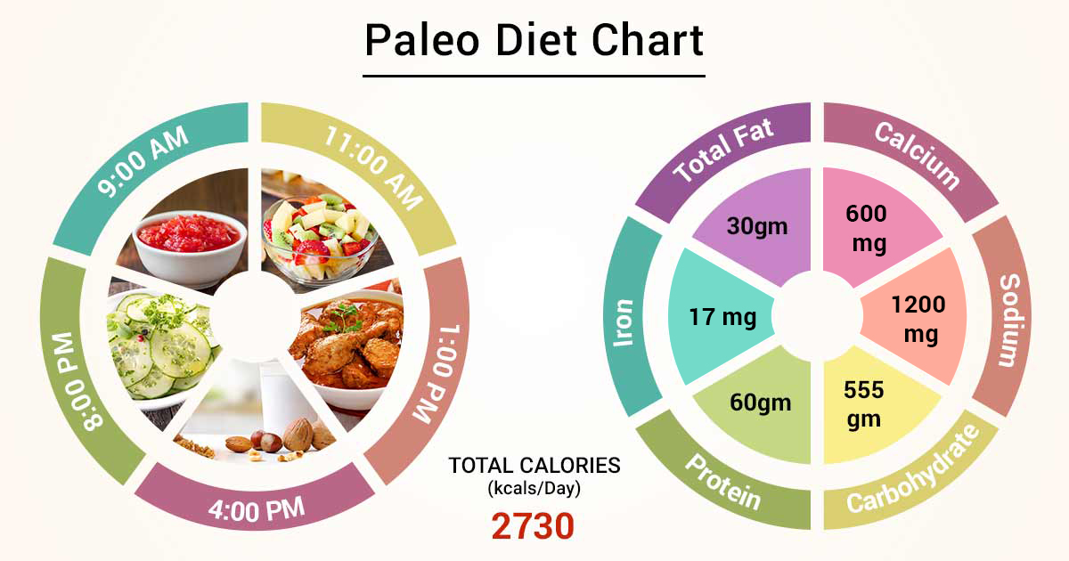 paleo diet vs other diets weight loss graph