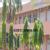 S D MAHABIR DAL HOSPITAL,  | Lybrate.com
