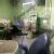 Dental pulse Image 1