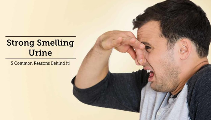 Strong Smelling Urine - 5 Common Reasons Behind it!