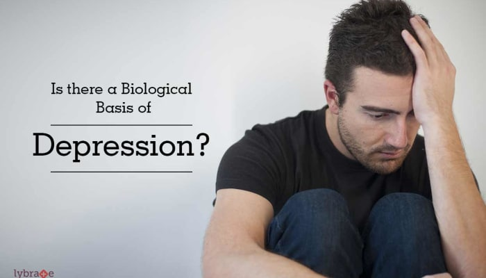 Is there a Biological Basis of Depression?