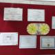 Chhabra Psychiatry Centre Image 6