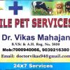 Dr.Vikas Mahajan - Veterinarian, Indore