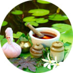 MS Haque Clinic | Lybrate.com