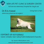 new life pet clinic & surgery center | Lybrate.com