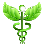 Dr Archna Jain's Homeopathy Clinic, Gurgaon