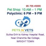 Pets N Vets, Jabalpur | Lybrate.com