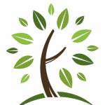 Vivekananda Homeo Clinic & Psychological Counseling Center, Chennai