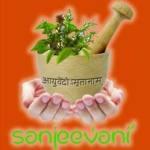 Ayurveda Sanjeevani, Delhi