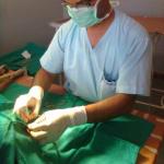 Dr. Ishrat Ansari  - Veterinarian, DELHI