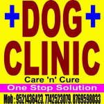 Dr. Anil Prakash - Veterinarian, Jaipur