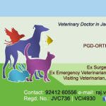 Dr. Rohit Raj Raj - Veterinarian, jamshedpur