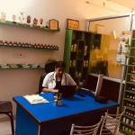 Dr. Simranjit Kaur Brar - Homeopath, Bathinda
