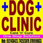 Dr. Dog Clinic & Care - Veterinarian, Jaipur