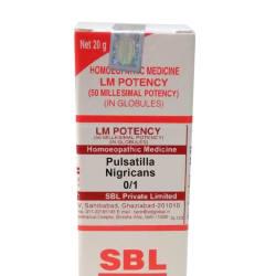 SBL Pulsatilla Nigricans 0/1 LM