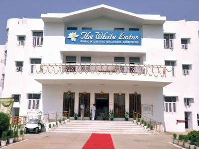 The White Lotus Ayurveda Wellness Center in Ashram, Delhi