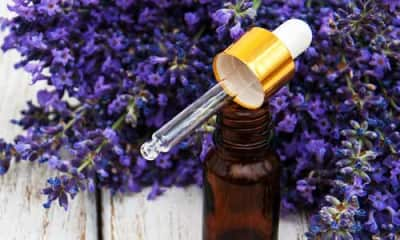 Benefits of Lavender Oil And Its Side Effects | Lybrate