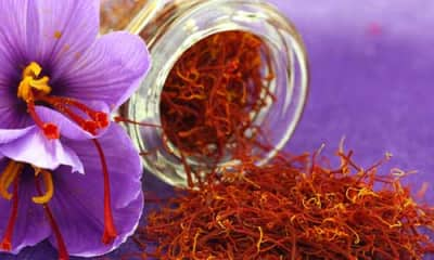 Saffron Benefits And Its Side Effects Lybrate