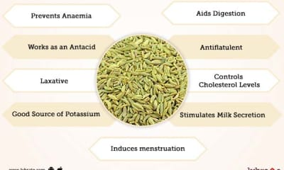 Fennel (Saunf) Benefits And Its Side Effects | Lybrate