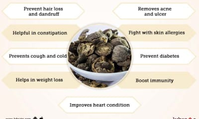 Haritaki Benefits And Its Side Effects | Lybrate