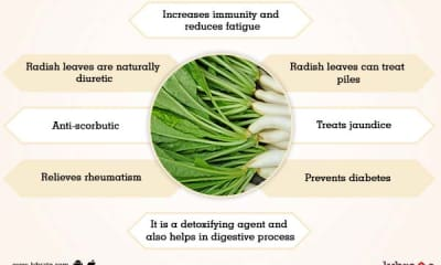Radish Leaves Benefits And Its Side Effects | Lybrate