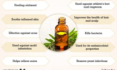 Benefits of Tea Tree Oil And Its Side Effects | Lybrate