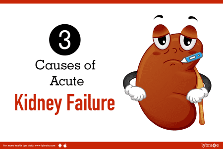 3 Causes Of Acute Kidney Failure By Dr Sanjiv Saxena Lybrate