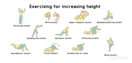 Opinion, height increase stretches adults consider, that