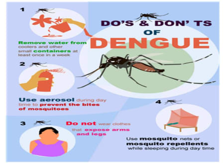 Dengue Fever Infects La Fte De >> Do S And Don Ts Of Dengue Fever By Dr Jitendra Vala Lybrate