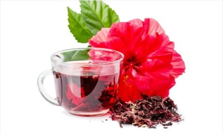 Hibiscus Benefits And Its Side Effects Lybrate