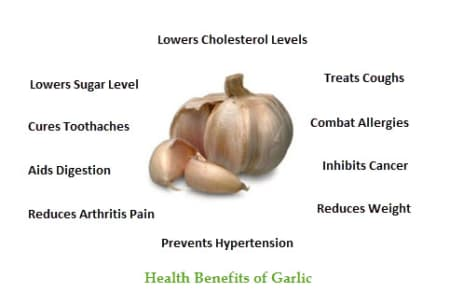 Benefits of Garlic - By Dt  Manidipa Dey | Lybrate