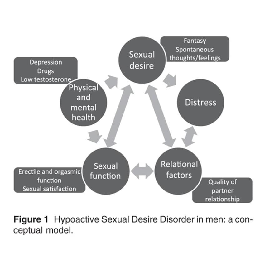 Male hypoactive sexual desire disorder images 47